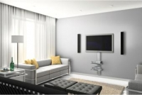 Premium Flat Panel TV